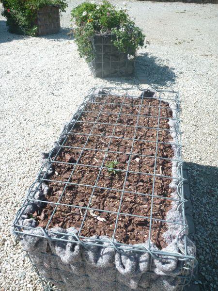 Gabionen Hochbeet eckig, Aussen 100 cm x 100 cm , Innen 50 cm x 50 cm, Höhe 50 cm, Maschung 5x10cm